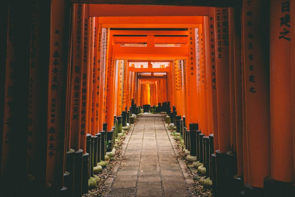 grey concrete pathway with orange walls