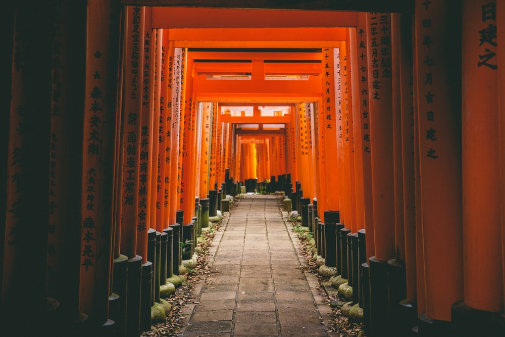 Torii Gates Photo By Dil At Thevisualiza On Unsplash