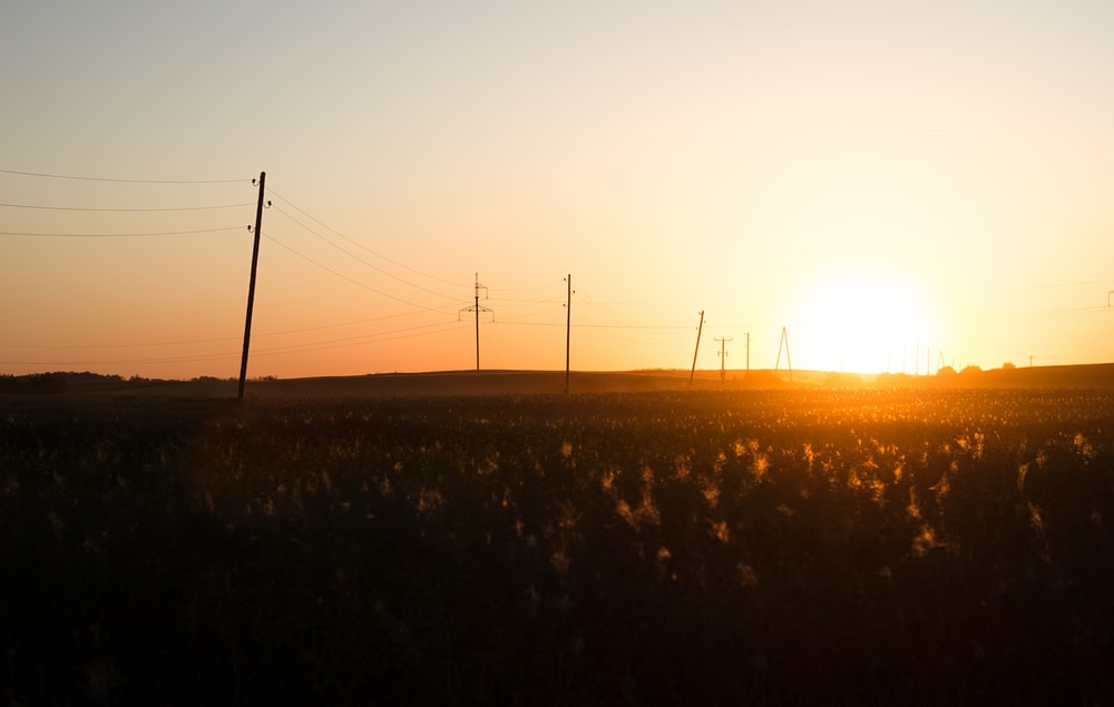 silhouette of field during sunrise