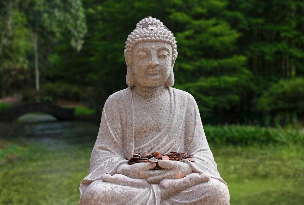 shallow focus photography of Gautama Buddha statue