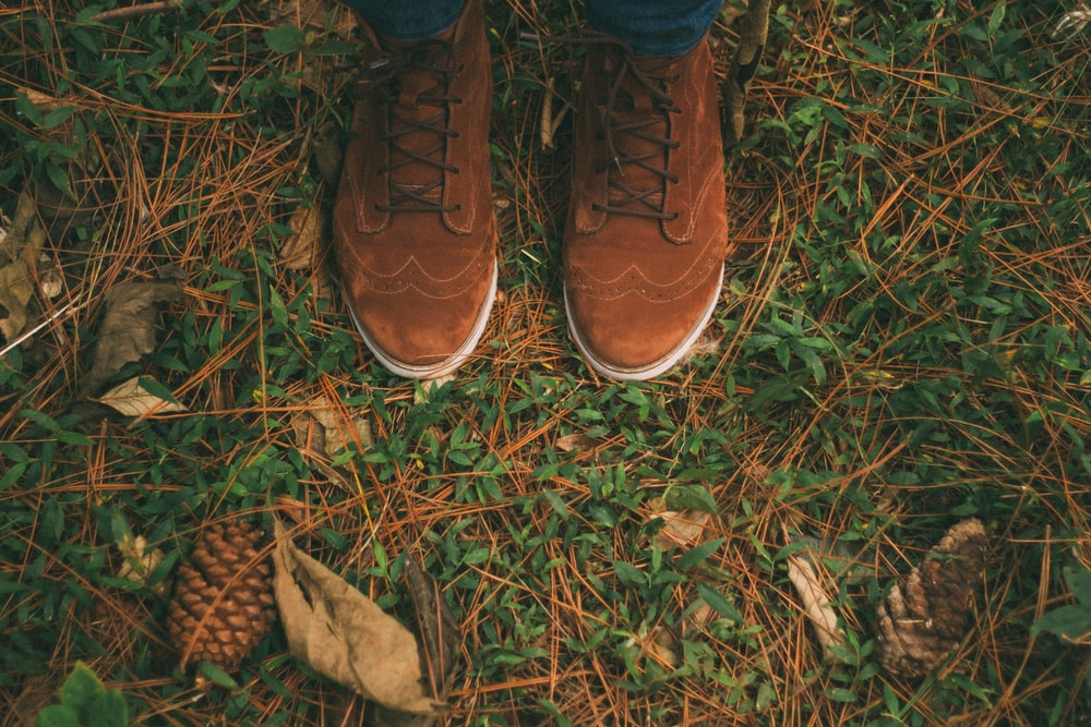 pair of brown wingtip suede shoes on green grass