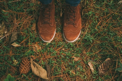 pair of brown wingtip suede shoes on green grass boot teams background