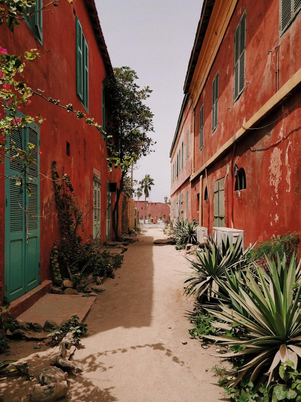 Alley in Île de Gorée, Dakar, Senegal