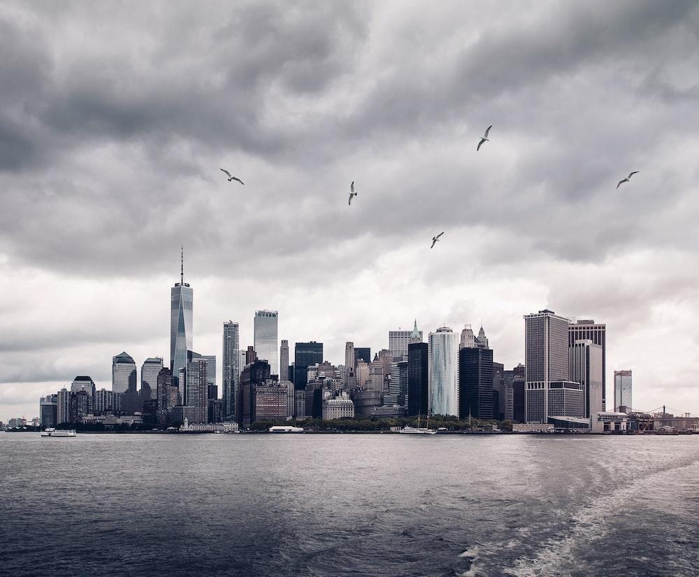 100 skyline pictures download free images on unsplash