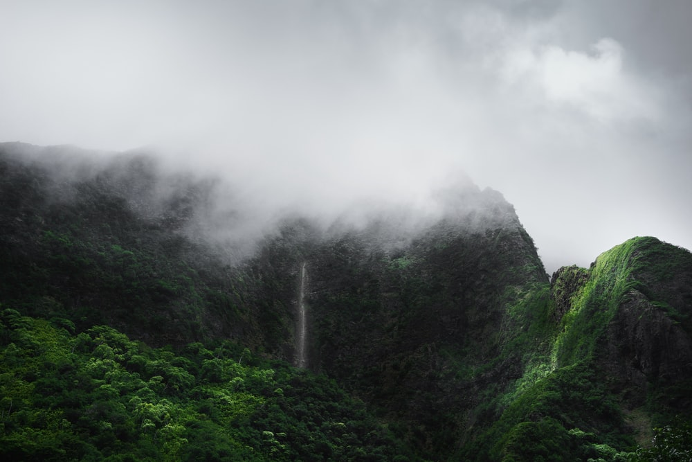 mountain covered with fogs