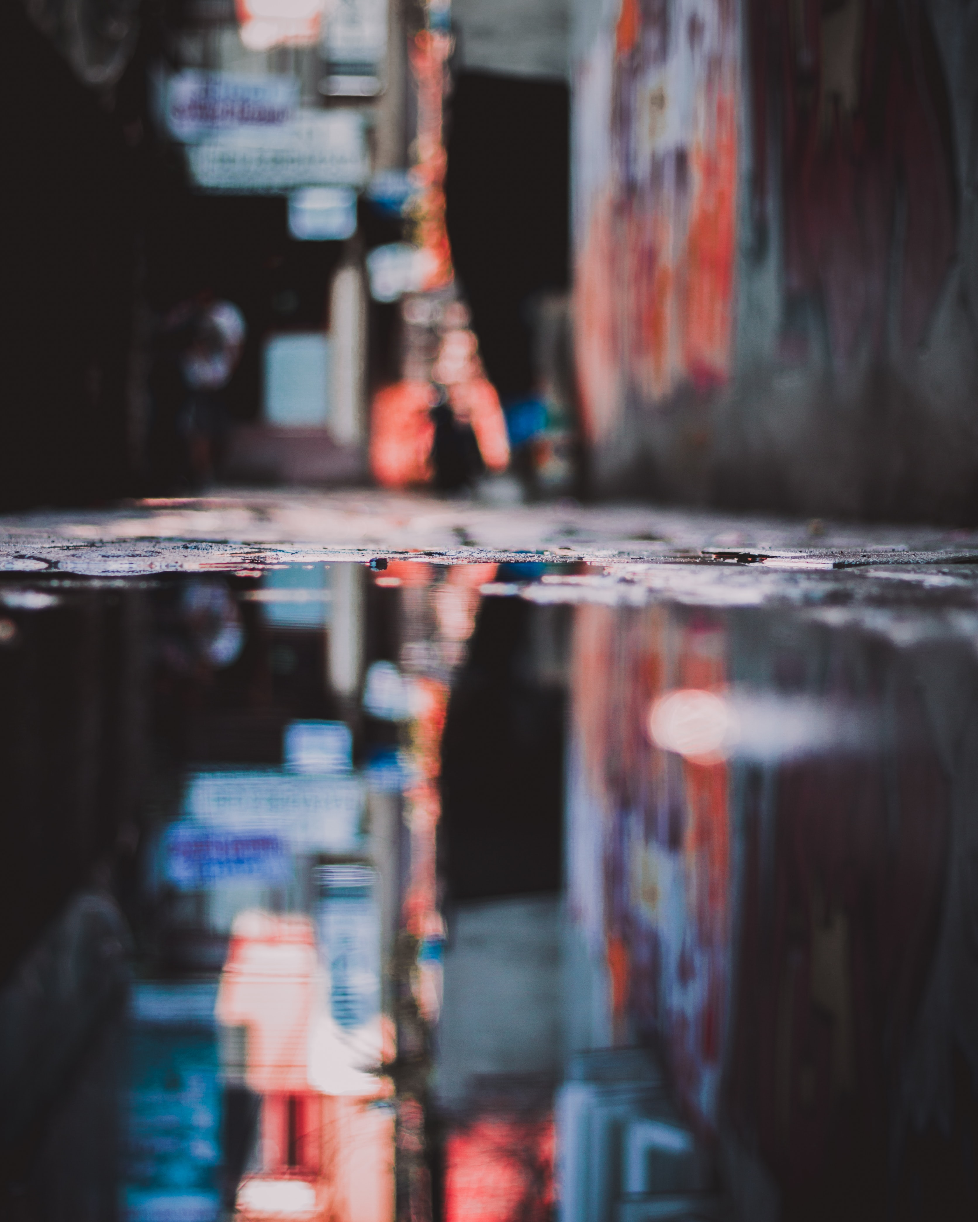 selective focus photography of stagnant water