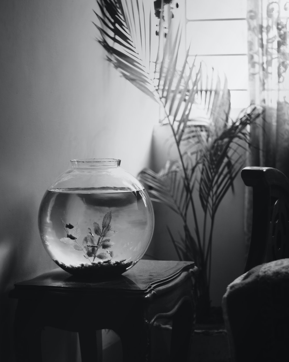 grayscale photo of glass fish bowl