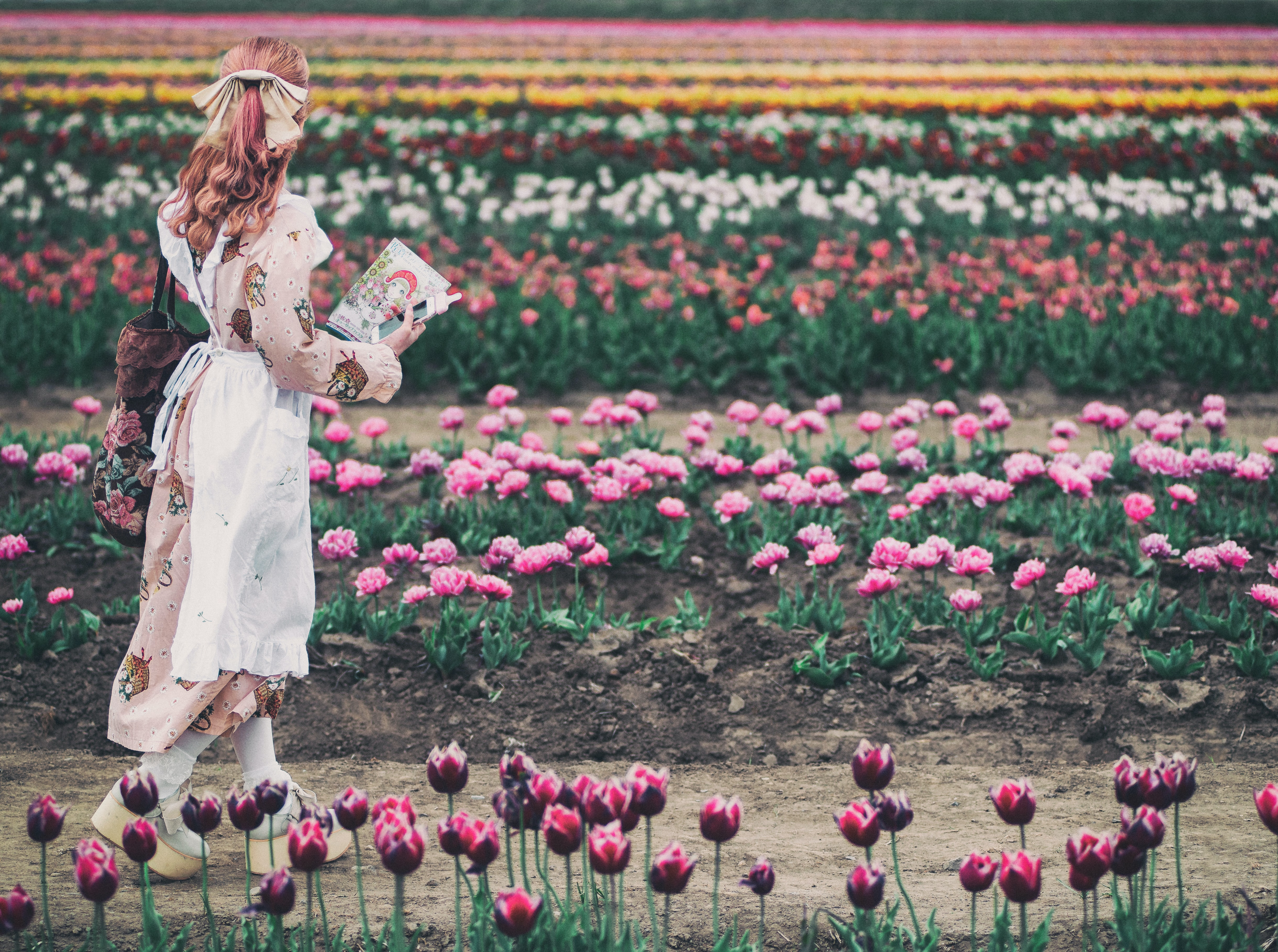 Woman Walking Near Field Of Tulip Flower At Day Time