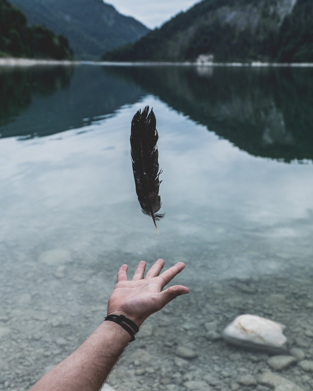black feather falling on person's hand