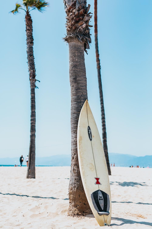 Surfboard Ocean Surfing And Beach Hd Photo By Tyler Nix