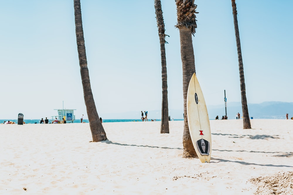 selective focus photography of white surfboard