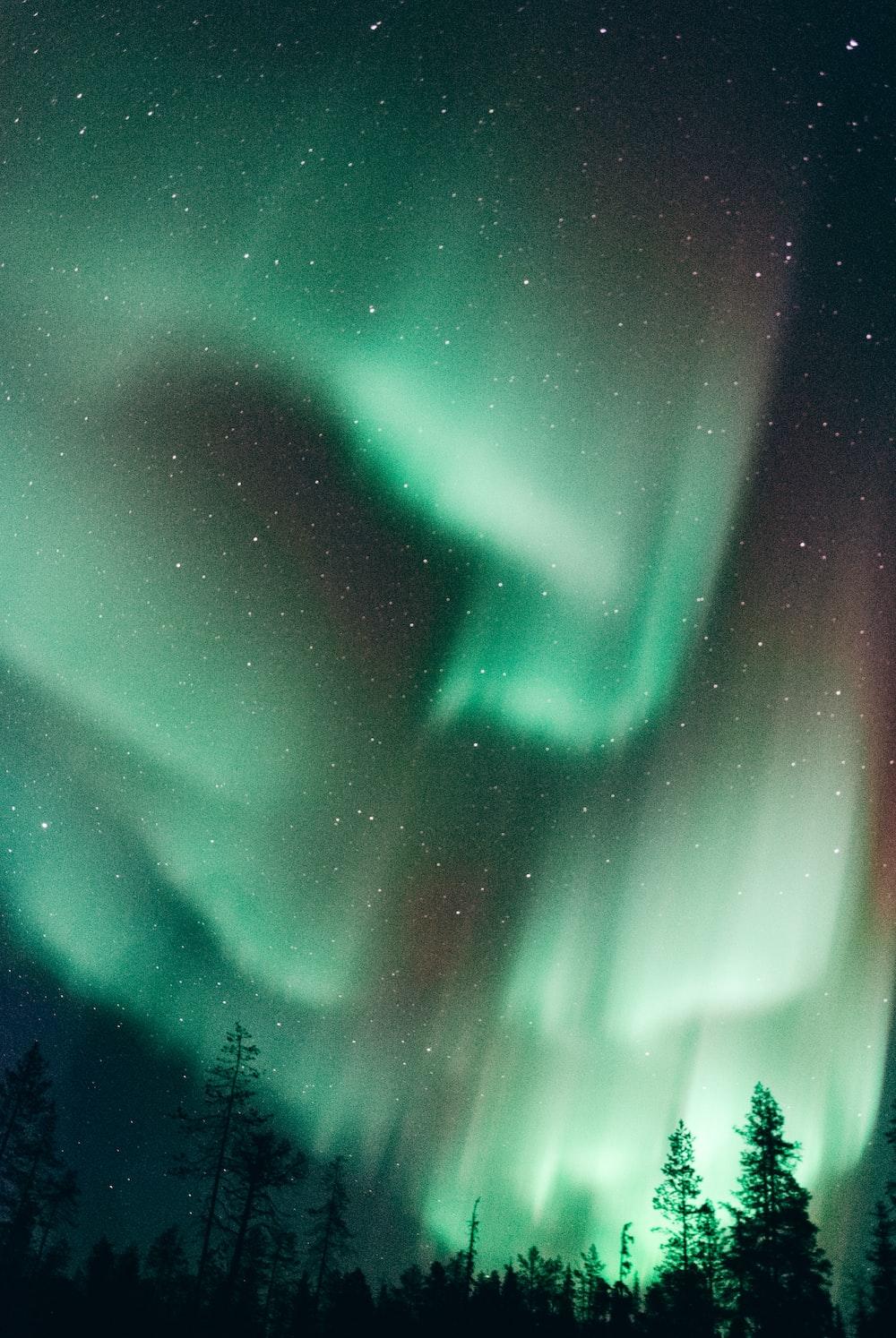 northern light at night
