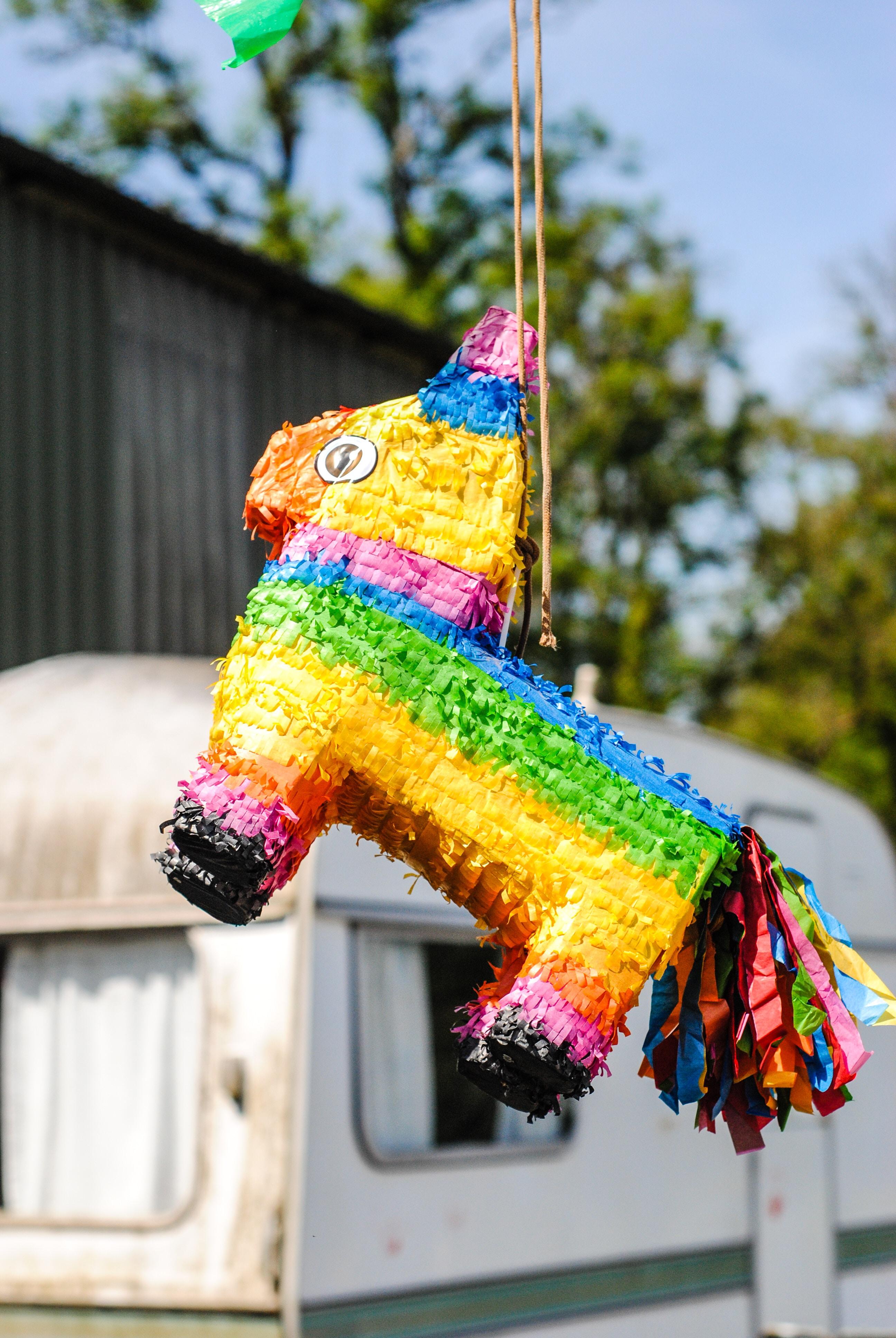 multicolored donkey pinata