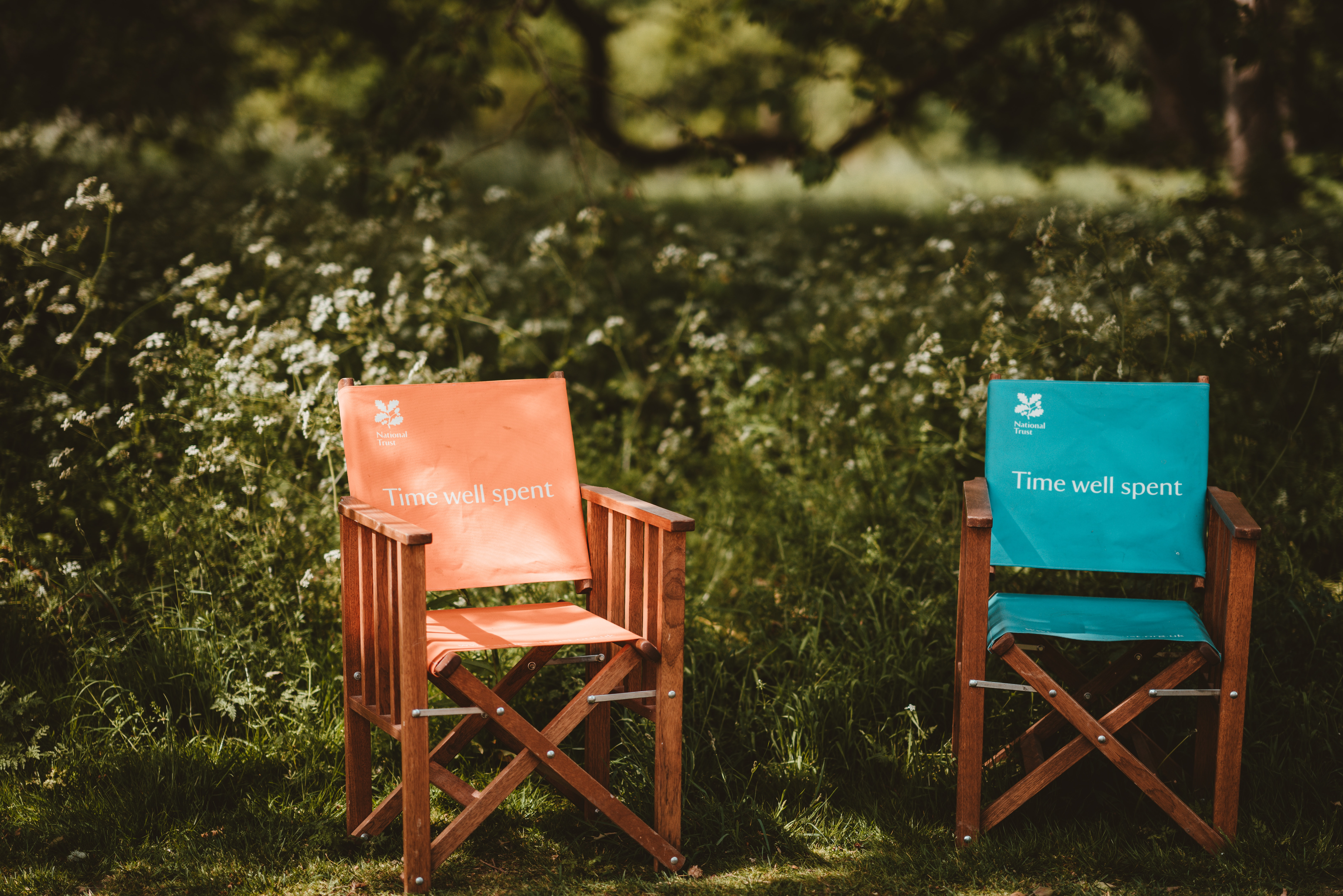 brown wooden folding chair near plant