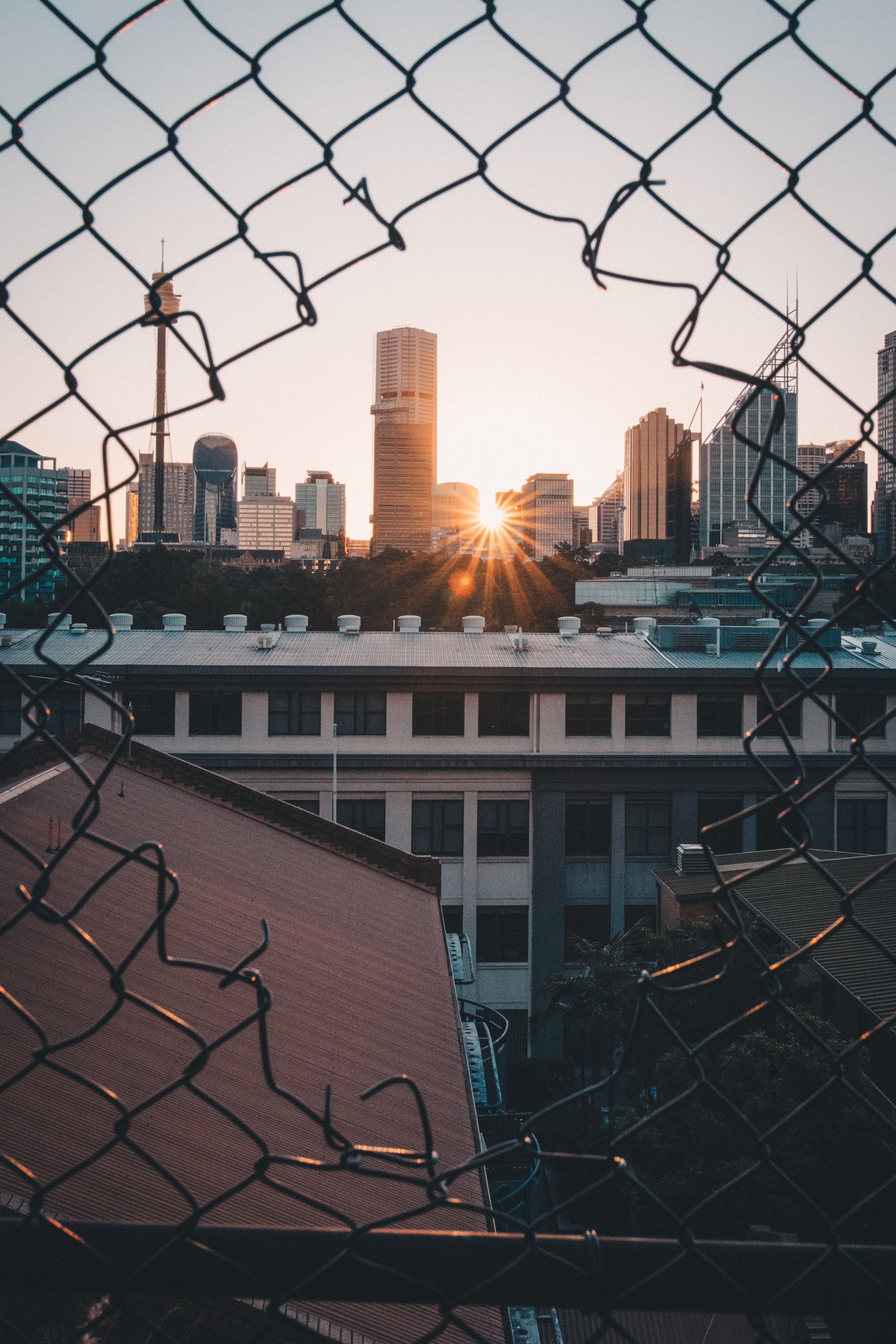 viewing sunset through cyclone fence