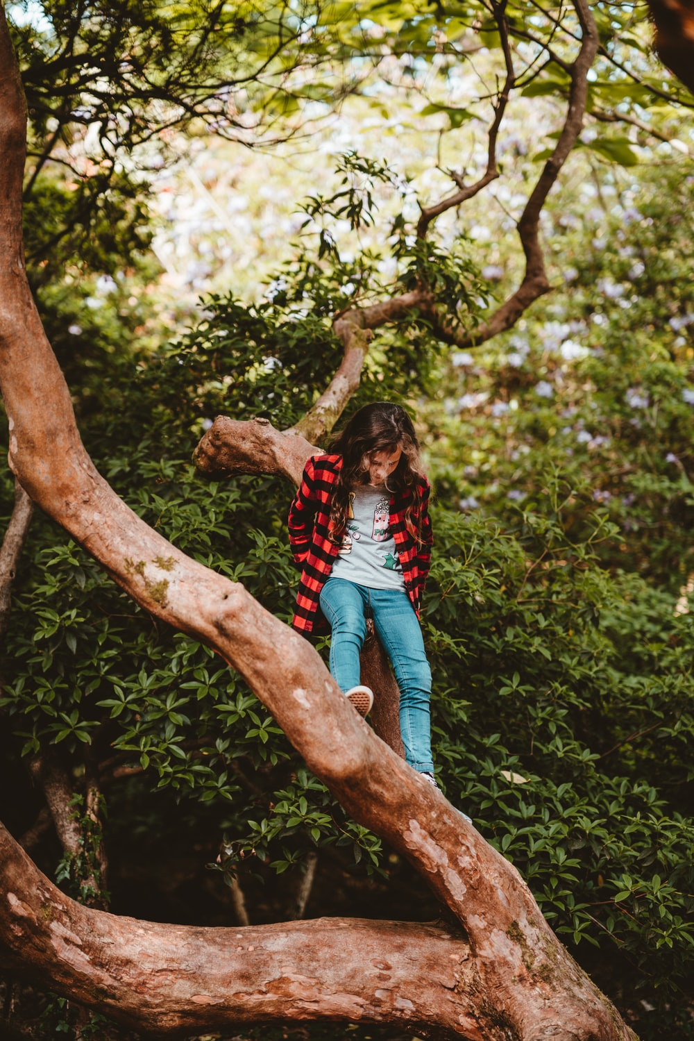 girl sitting on tree branch during daytime