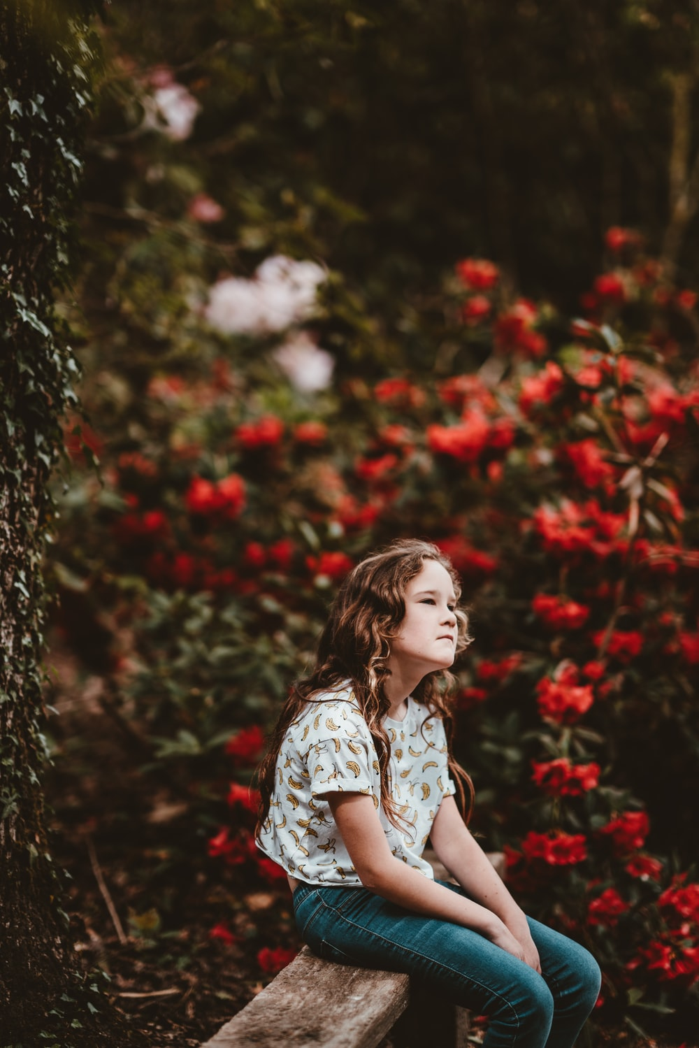 girl sitting on bench beside the red flowers
