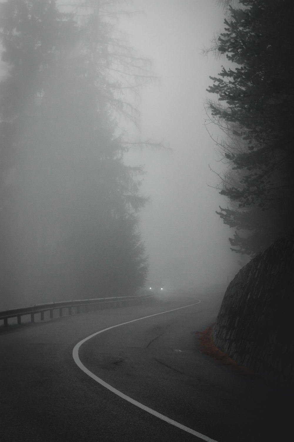 vehicle with turned on headlights near curve during foggy road