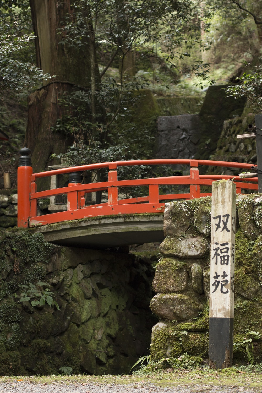 wooden bridge with signage surrounded by green leafed plant