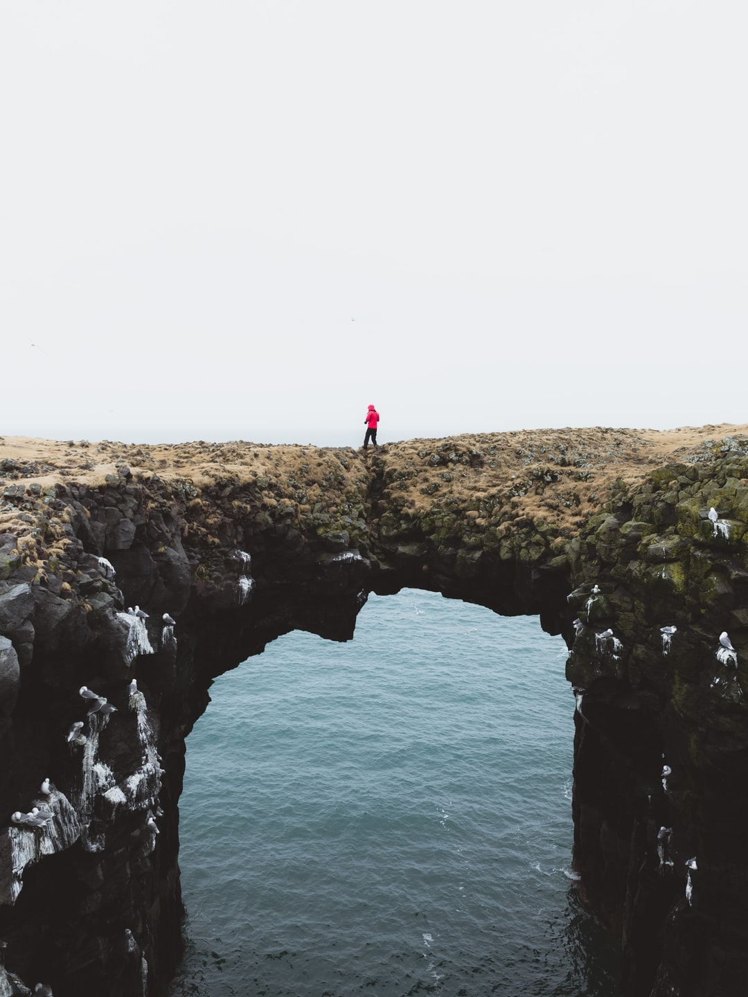 A man stands on the natural rock bridge, perched above the ocean below, in an attempt to capture photos of the flying seagull