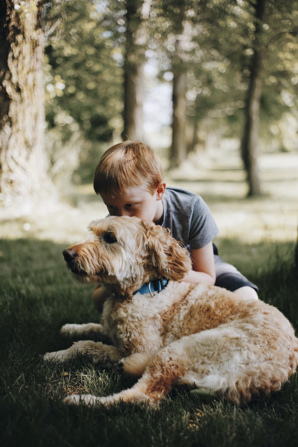 boy kissing dog laying on grass