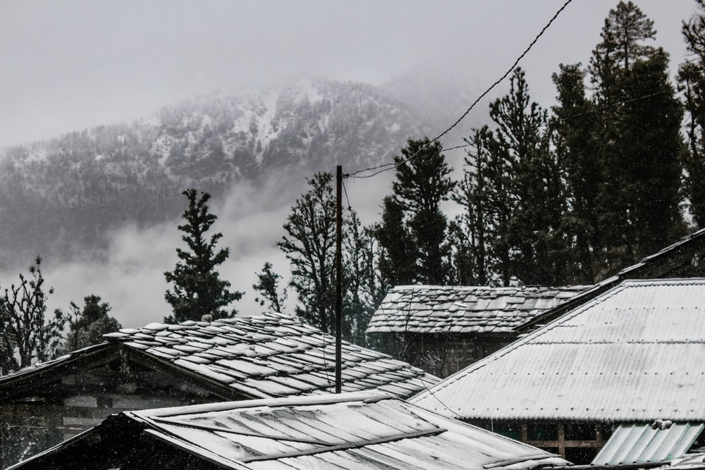 grayscale photography of houses near trees and mountain at the distance during fog