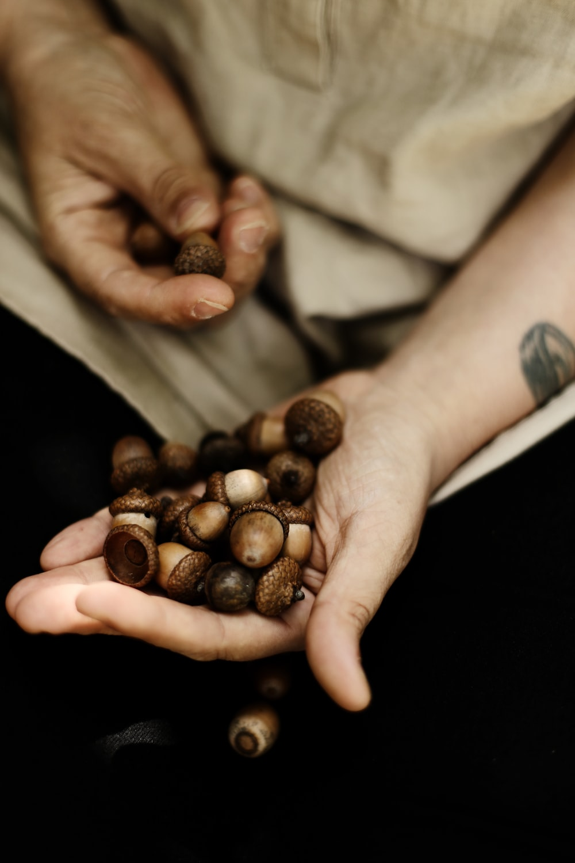 person holding wallnuts