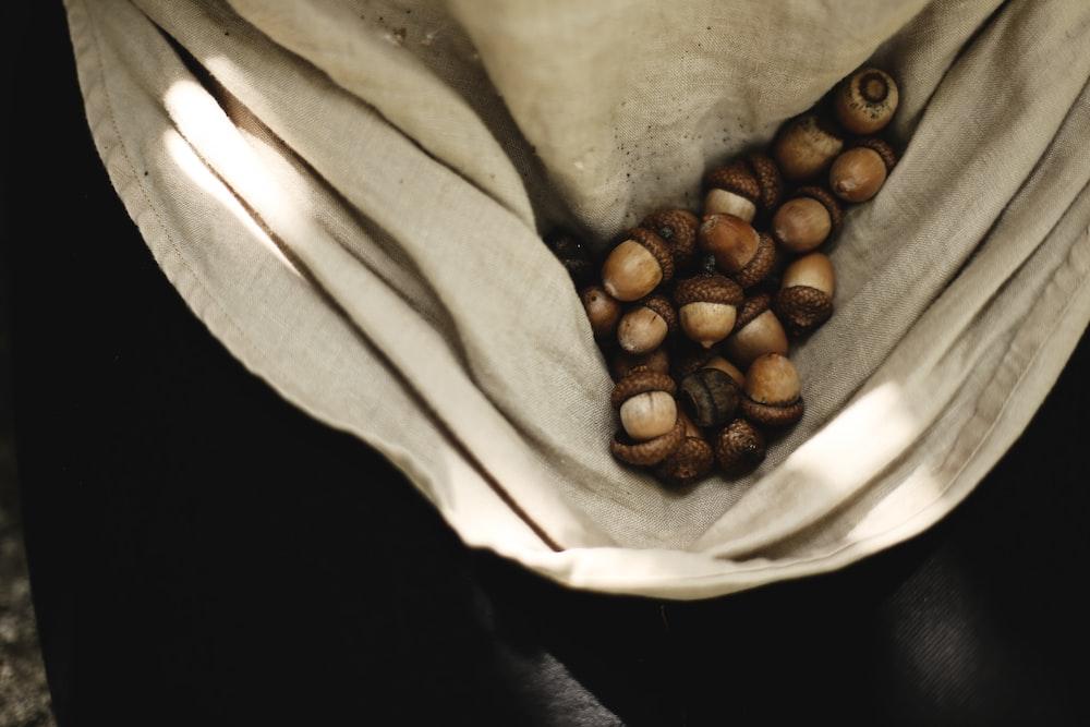 acorn lot on beige textile