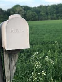 Essential Facts About Mailbox mailbox stories