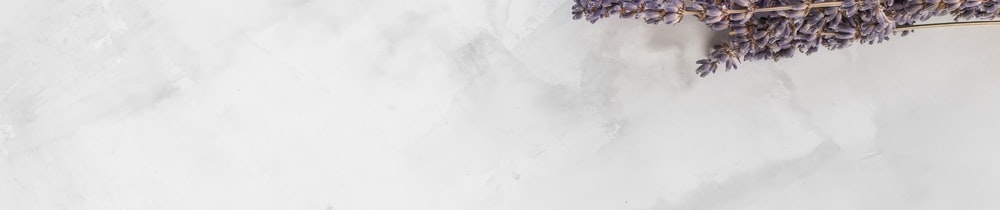 Rainicorn header image