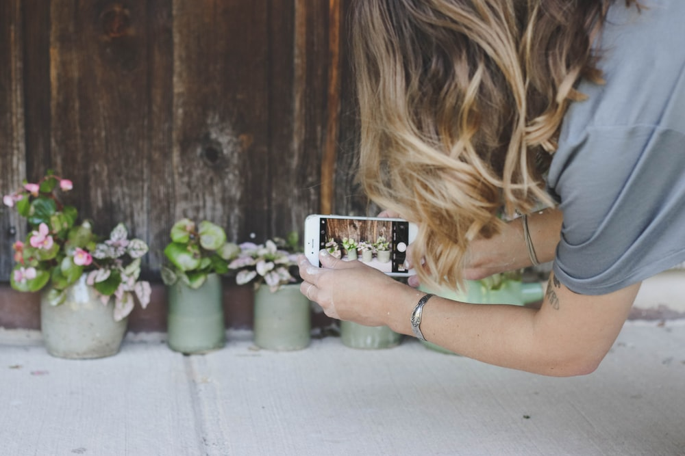 person taking a shot of plants