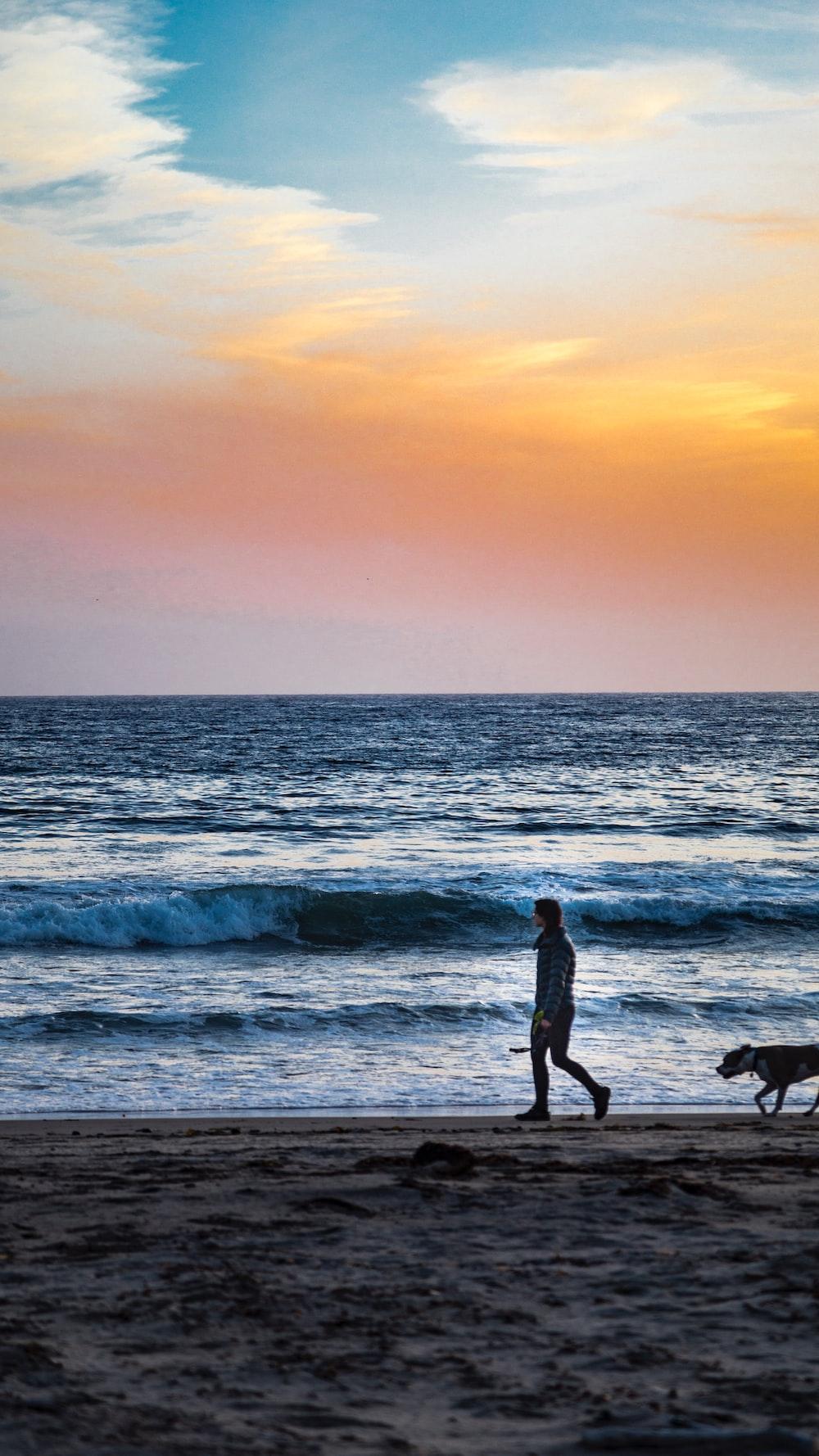 person and dog walking on seashore at daytime