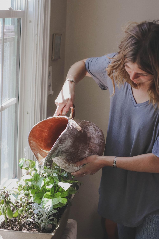 woman watering plant beside window