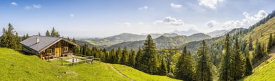 Bavarian beauty