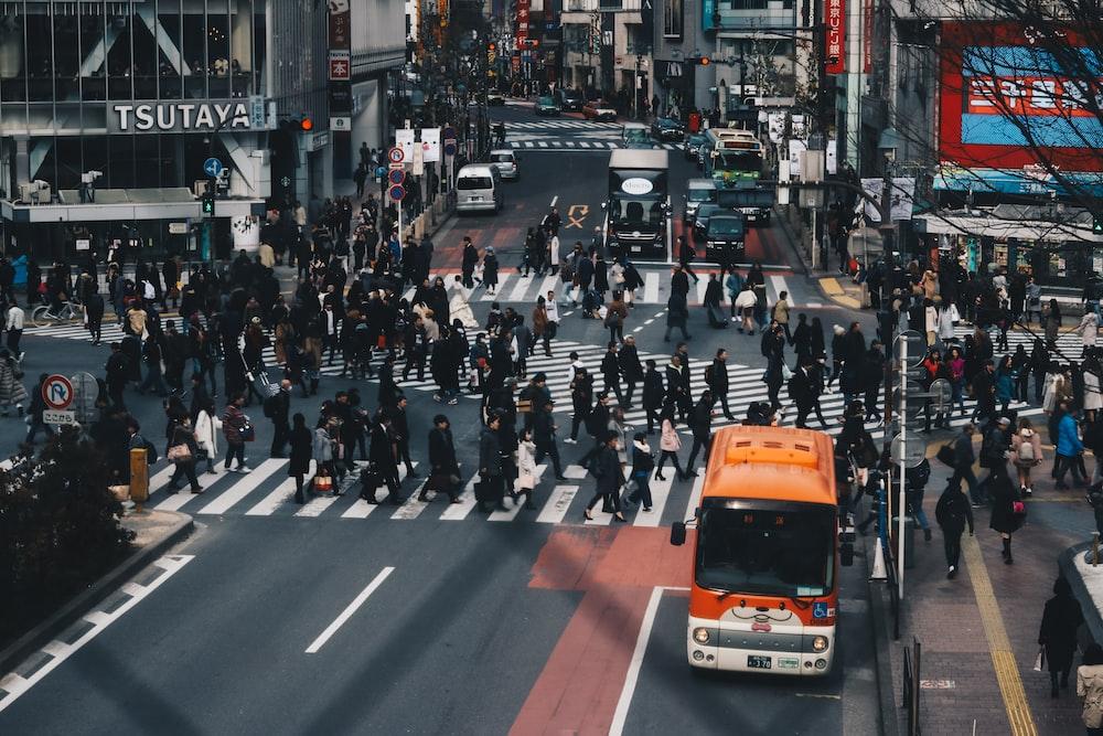 people walking in pedestrian lanes