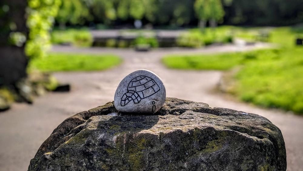 dogloo printed stone