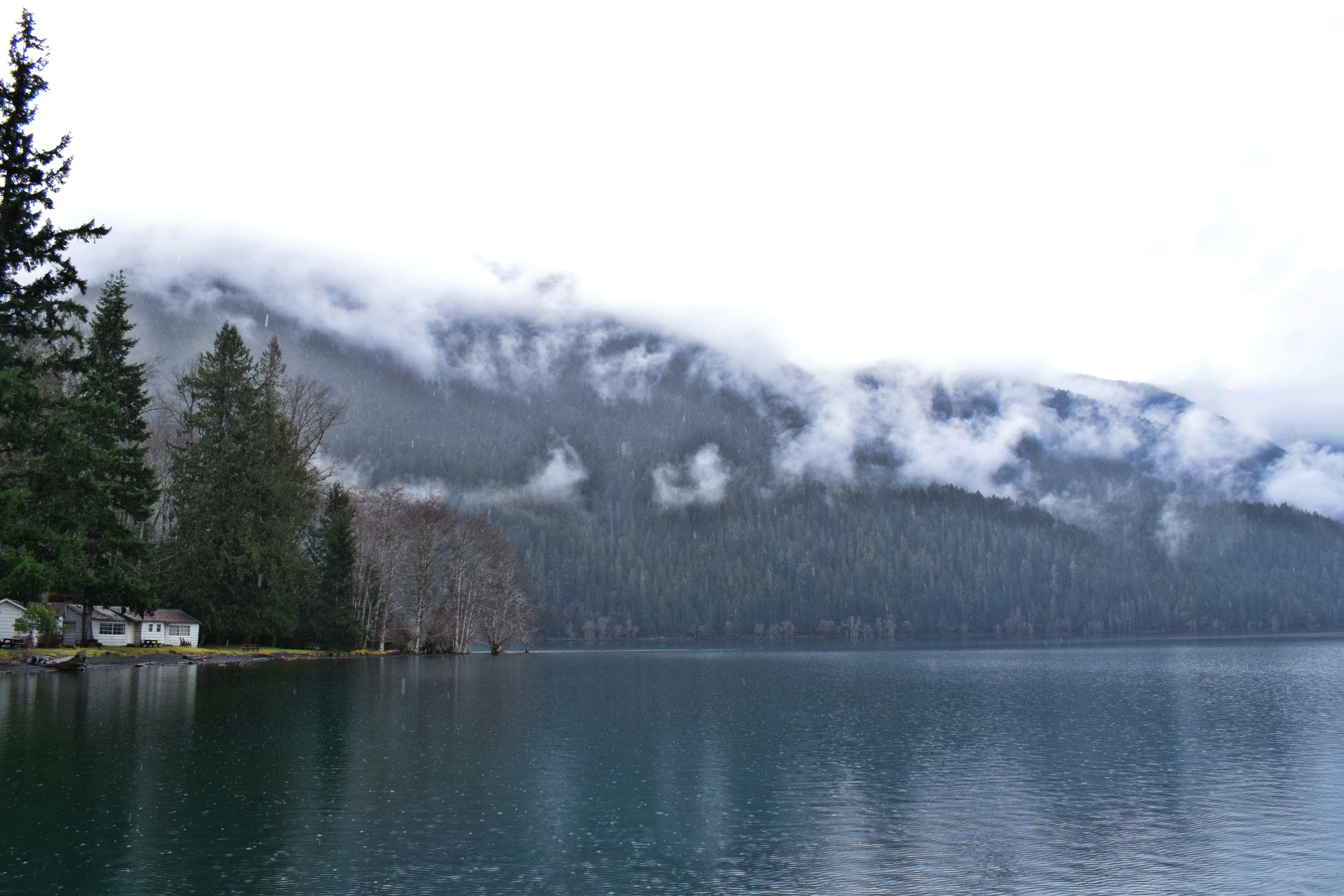 body of water near forest mountain covered by fog