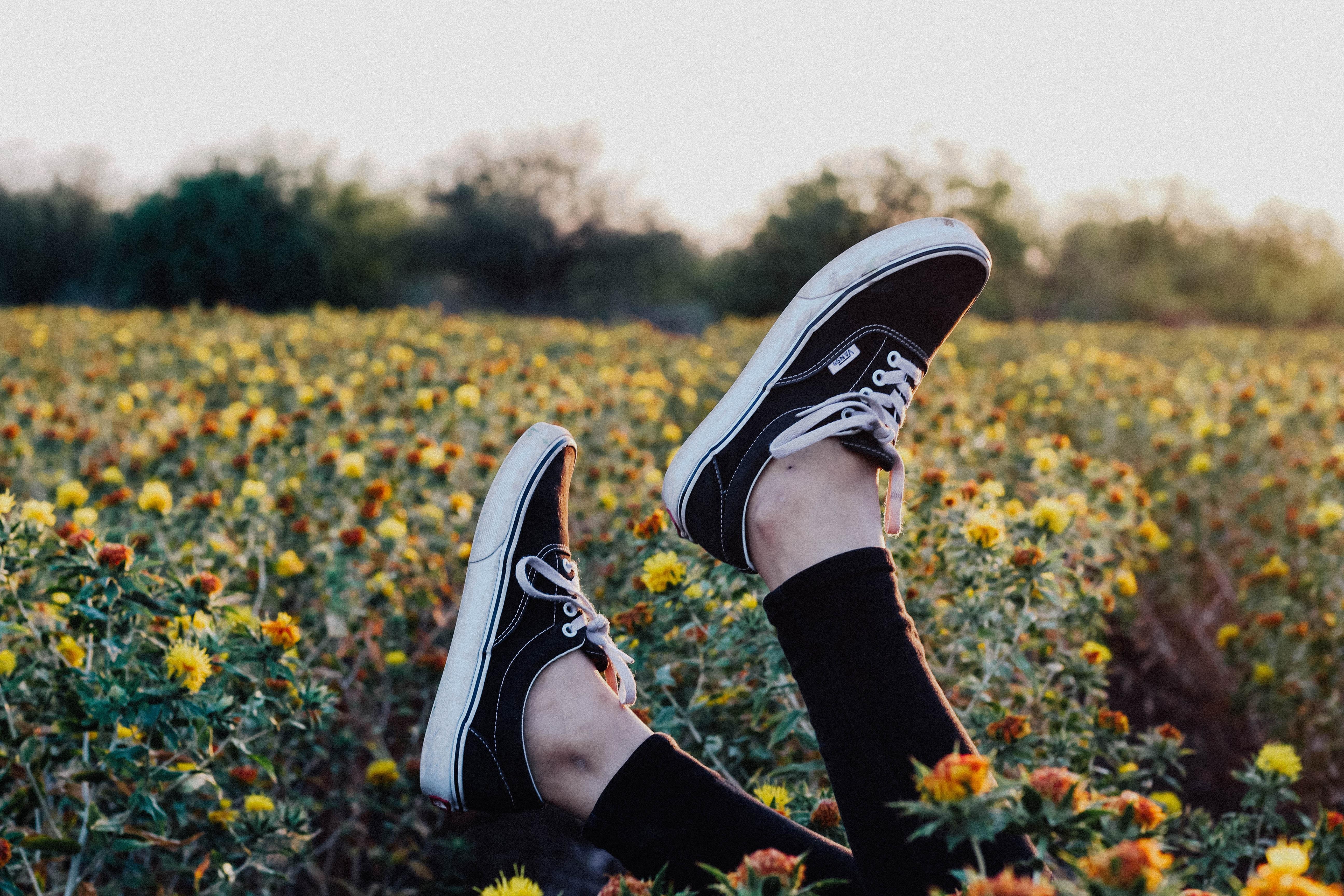 person wearing pair of black Vans low-top sneakers