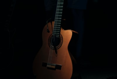 brown cutaway acoustic guitar guitar zoom background