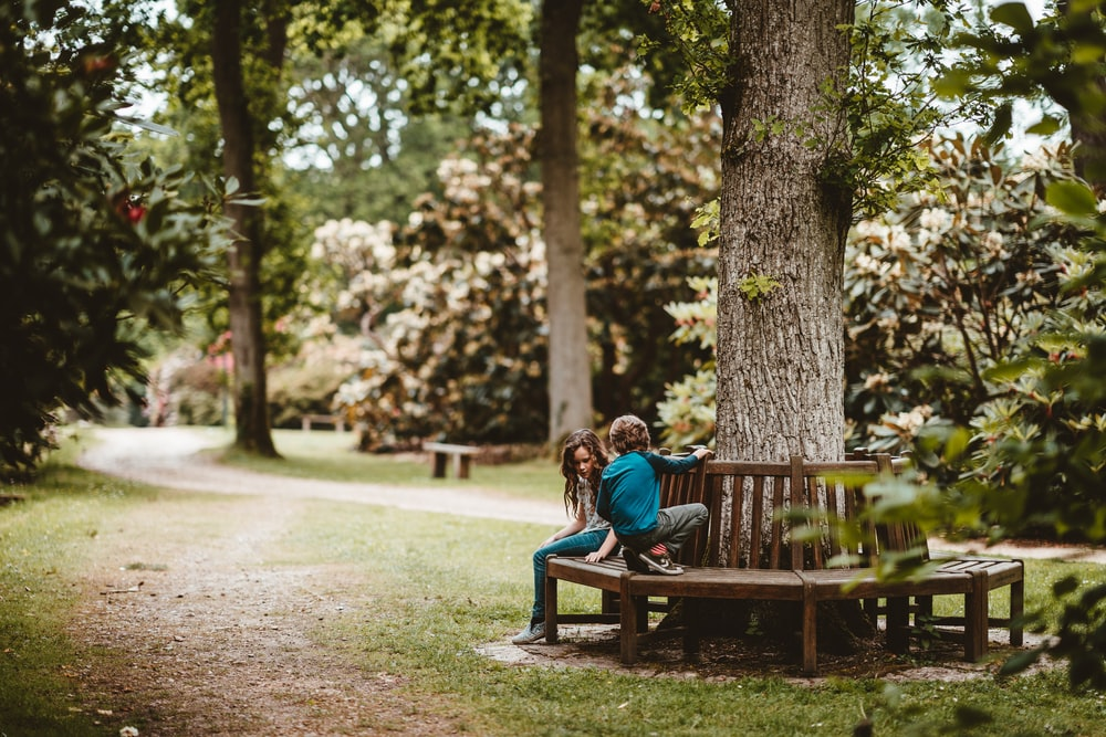 girl and boy sitting on bench beside tree on park