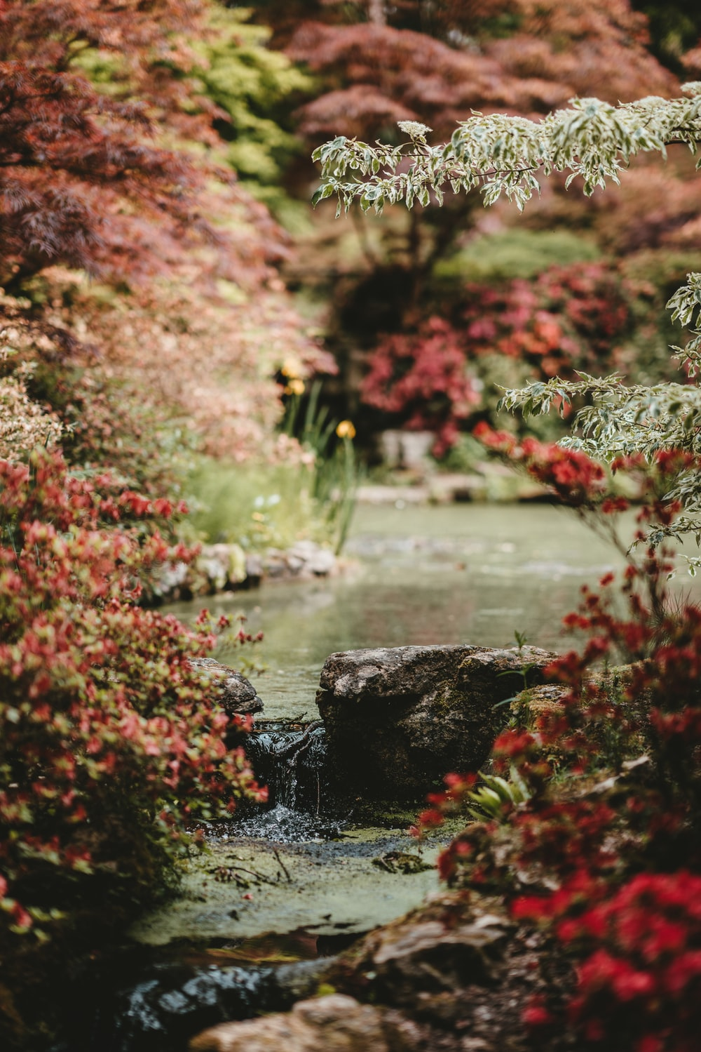 River Wallpaper Forest Japanese Garden Water Nature Pictures ...