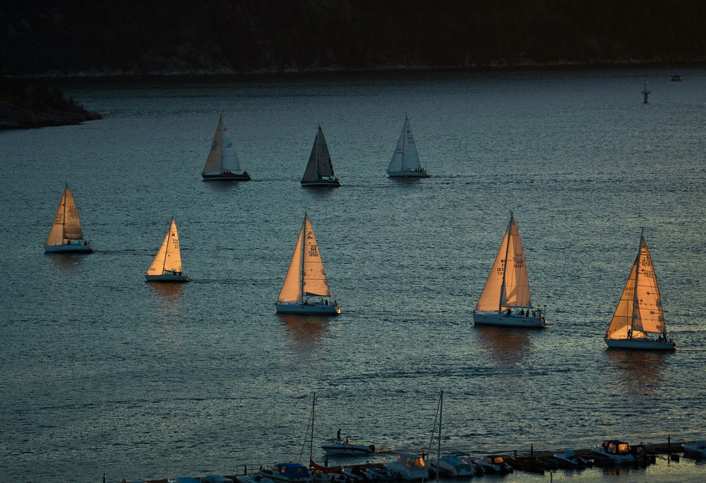 sailboats on body of water