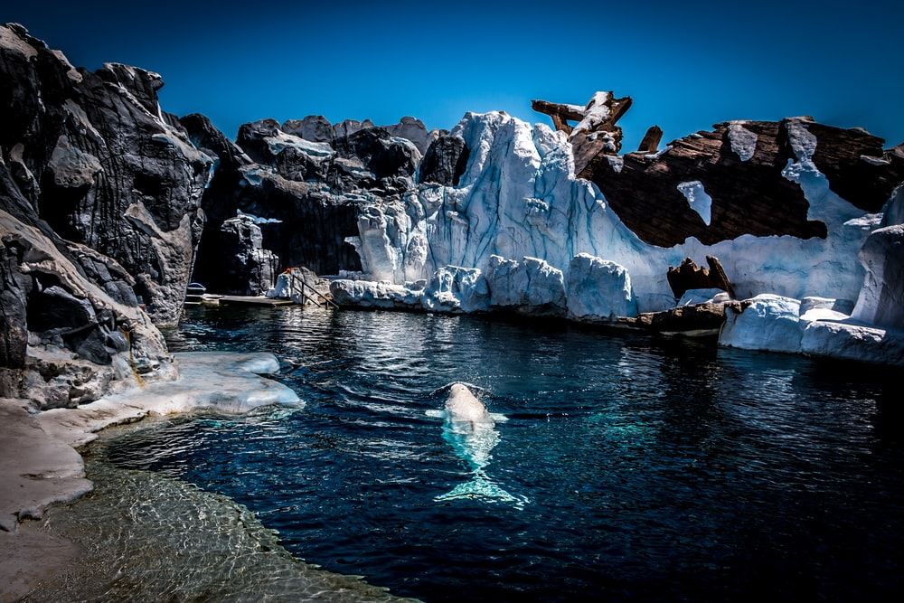 black rock with melting ice