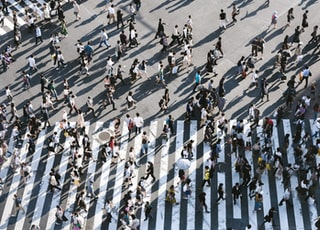 aerial view of people walking on raod