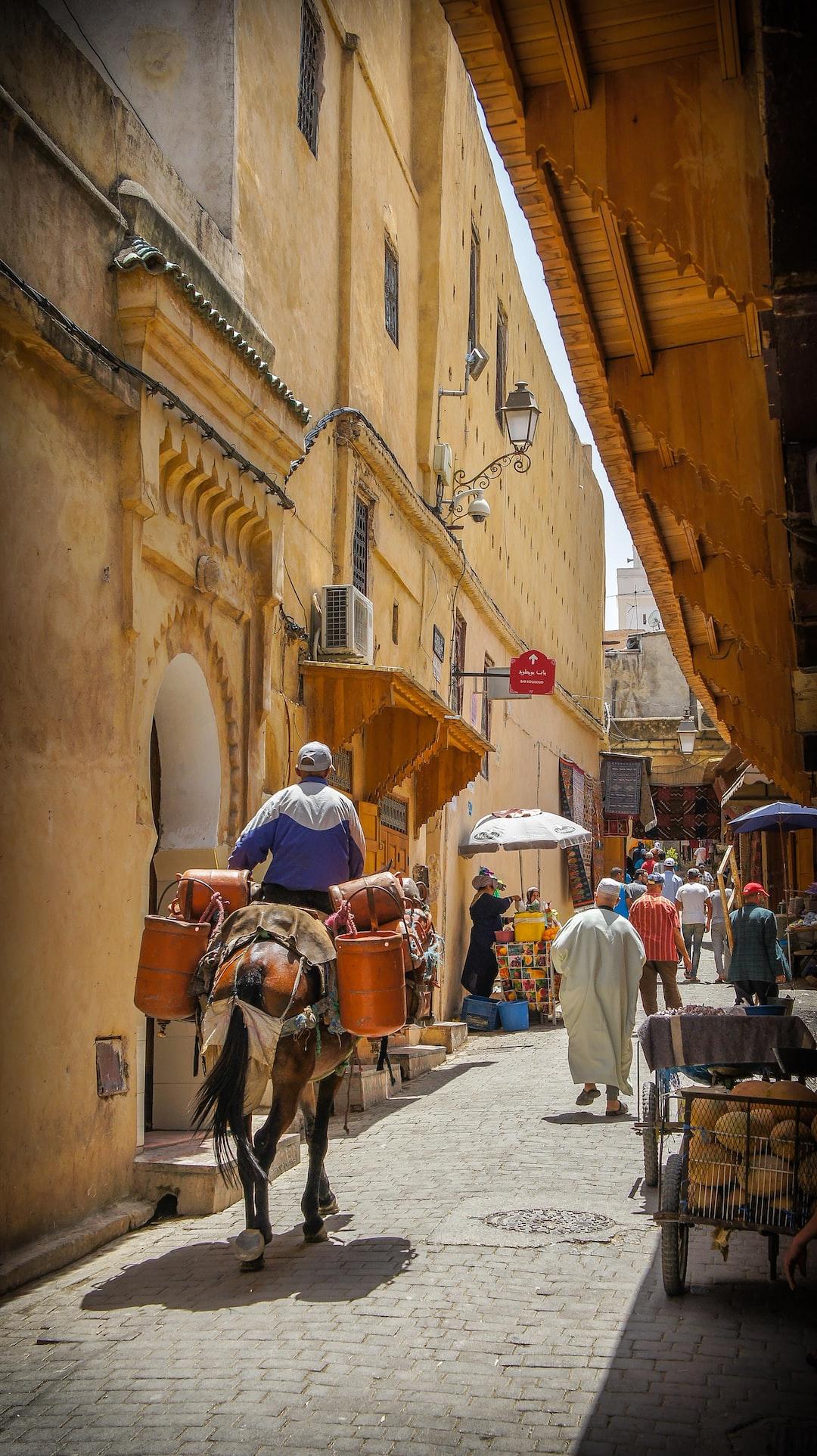 Fes - Morocco / Street & Donkey