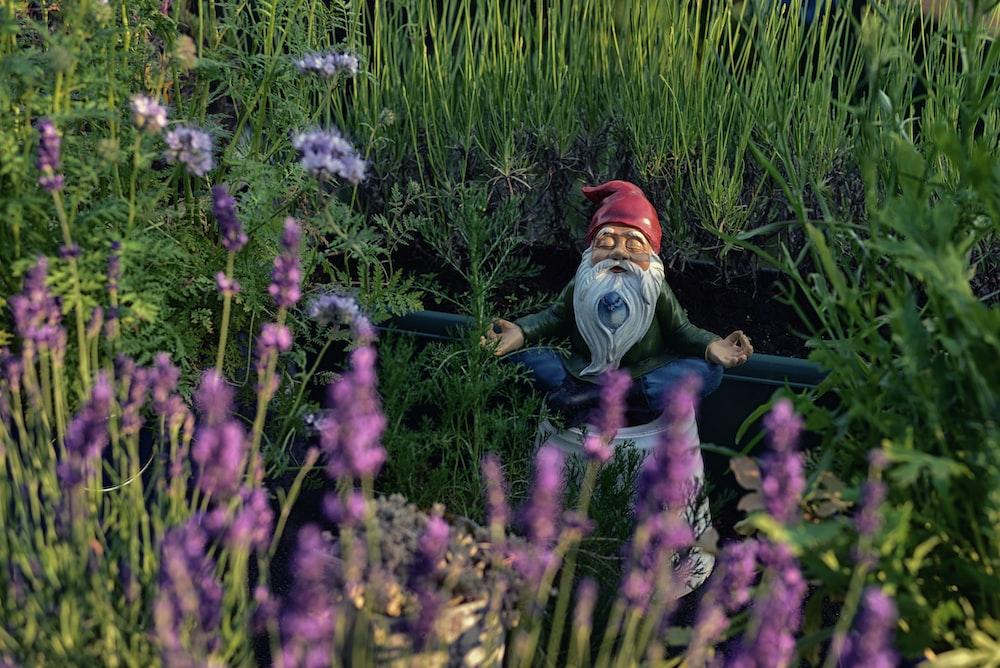 dwarf statue in garden