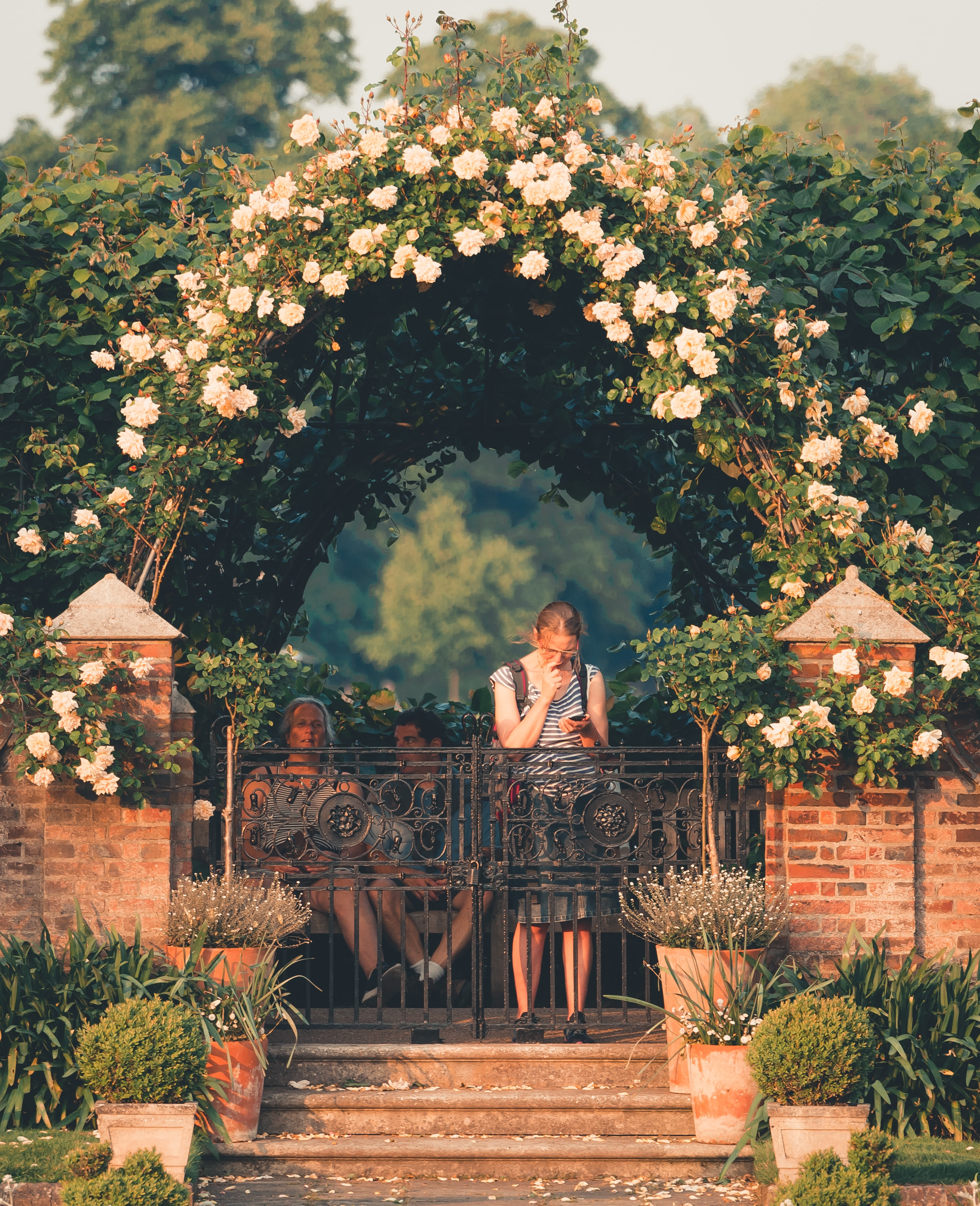 woman standing on gray fence under arch-shade flower plant at daytime