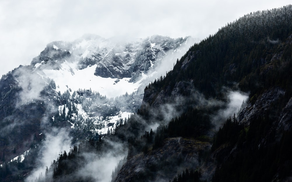 landscape photo of mountain with fogs
