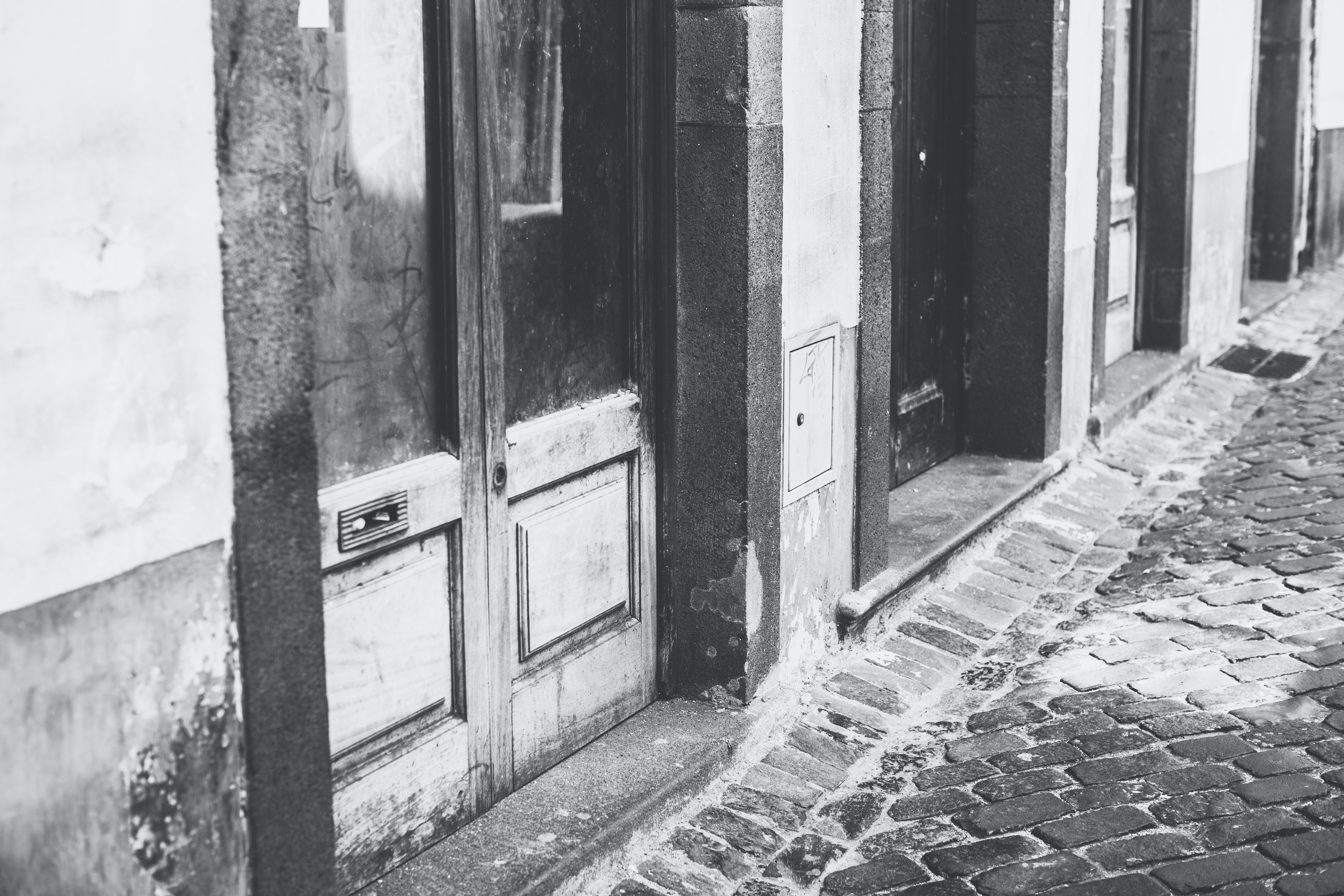 grayscale photography of doors