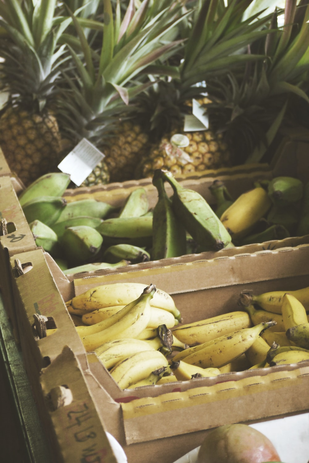 green and yellow bananas near pineapples